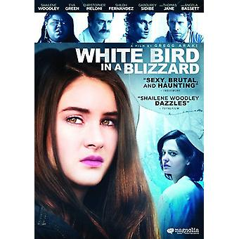 White Bird in a Blizzard [DVD] USA import