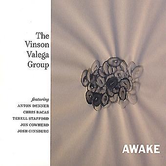 Vinson Valega - Awake [CD] USA import