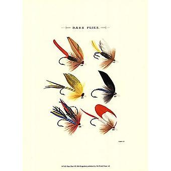 Bass Flies I Poster Print by Vision studio (10 x 13)