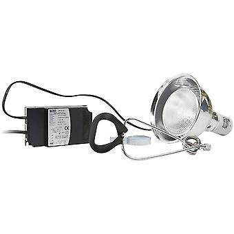 Ica Lampholder for Sunlight Halog 150W (Reptiles , Lighting , Lamps)