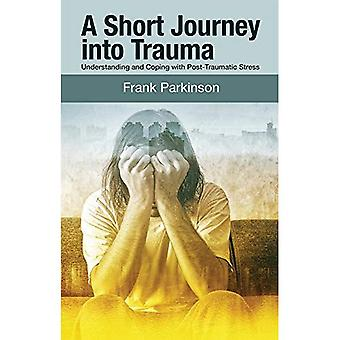 A Short Journey into Trauma: Understanding and Coping with Post-Traumatic-Stress