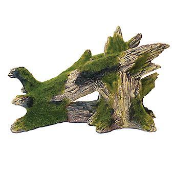Roca de la Blue Ribbon y musgo de madera cubren de árboles pequeños