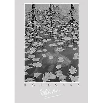 Печать плаката трех миров MC Эшера (20 x 28)