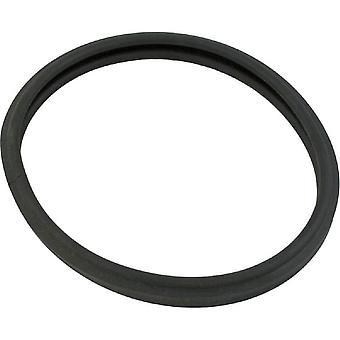 Generiska 90-423-1170 O-170 O-Ring