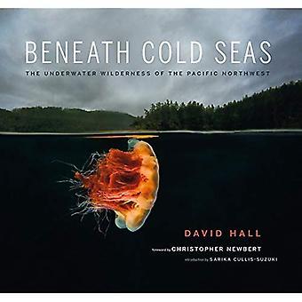 Bajo mares de frío: El desierto submarino del noroeste del Pacífico