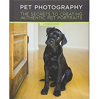 Pet Photography: Unlocking the Secrets to Creating Connection with Authentic Pet Portraiture