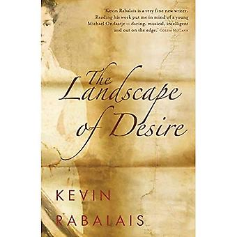 The Landscape of Desire