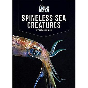 Ryggradslösa havsdjur