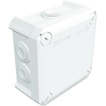 OBO Bettermann Wet-room junction boxes Pure white (RAL 9010) IP66
