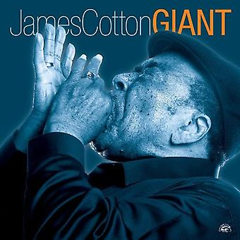 James Cotton - Giant [CD] USA import