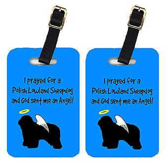 Carolines Treasures  AN1144BT Pair of 2 Polish Lowland Sheepdog Luggage Tags