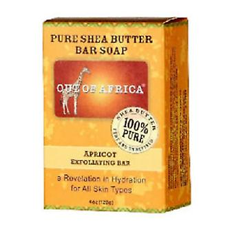 Out of Africa Seife reine Shea Butter Bar Apricot Peeling 2 Bar Pack