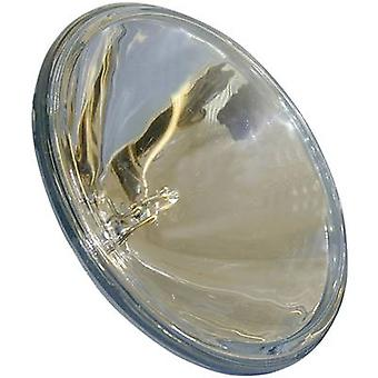 Replacement Bulb with Reflector 12V