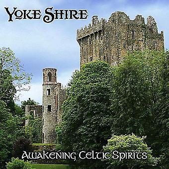 Yoke Shire - Awakening Celtic Spirits [CD] USA import