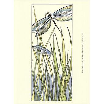 Pequeñas libélulas Gossamer I (P) impresión de póster por Chariklia Zarris (10 x 13)