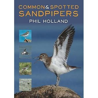 Common and Spotted Sandpipers by Common and Spotted Sandpipers - 9781