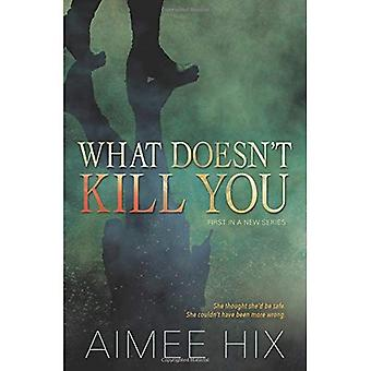 What Doesn't Kill You: A Willa Pennington, PI Mystery: Book 1