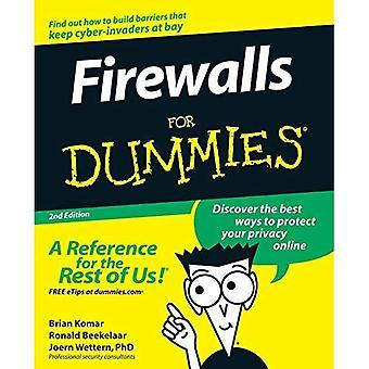 Firewalls for Dummies (For Dummies)