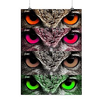 Matte or Glossy Poster with Owl Eye Nature Animal Smart Bird Look | Wellcoda | *q133