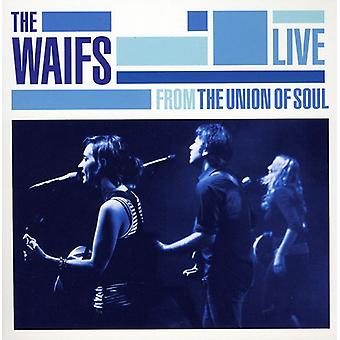 Waifs - Live From the Union of Soul [CD] USA import