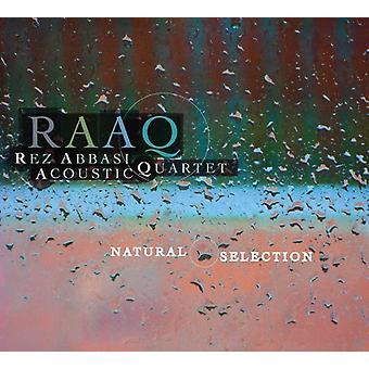 Abbasi, Cuarteto acústico de Rez - importación de Estados Unidos de la selección Natural [CD]