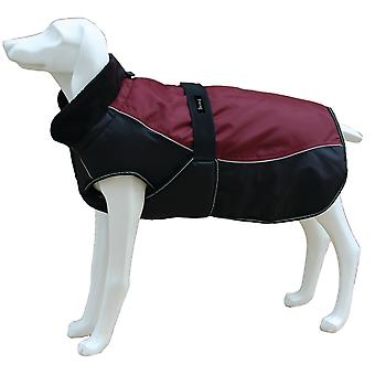 Freedog Chaqueta North Pole Model C Granate (Dogs , Dog Clothes , Coats and capes)