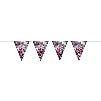 Wimpelkette Girlande Dekokette Sweet 16 Teenieparty Geburtstag pink 10m