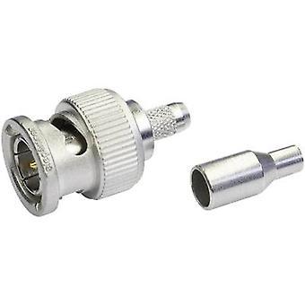 BNC connector Plug, straight 75 Ω Telegärtner J01002A0036 1 pc(s)