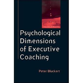 Psychological Dimensions to Executive Coaching (Coaching in Practice)