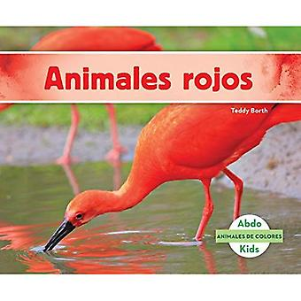 Animales Rojos (Red Animals) (Animales de Colores (Animal Colors))