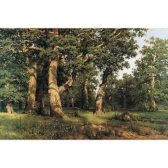Oak of the Forest,Ivan Shishkin,60x40cm