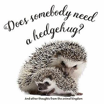 Does Somebody Need a Hedgehug? by Smith Gibbs - 9781423648109 Book