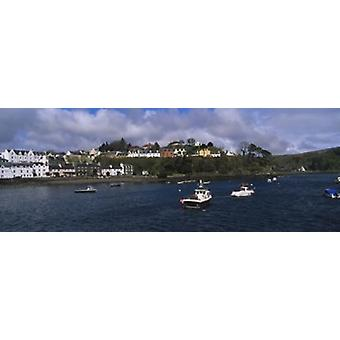 Buildings On The Waterfront Portree Isle Of Skye Scotland United Kingdom Poster Print