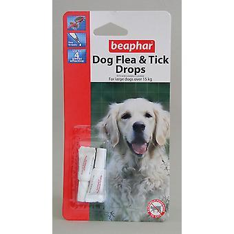 Pulgas de perro grande de beaphar gotas 4 semana protección (Pack de 12)