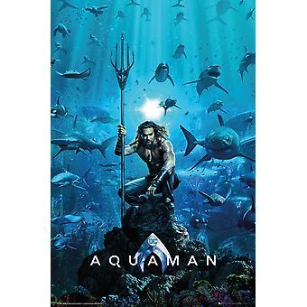 Aquaman ene lagen Maxi plakat 61x91.5.cm