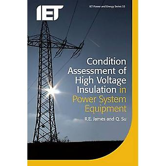 Condition Assessment of High Voltage Insulation in Power System Equip