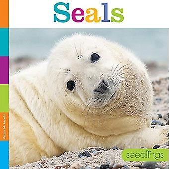 Zaailingen: zeehonden