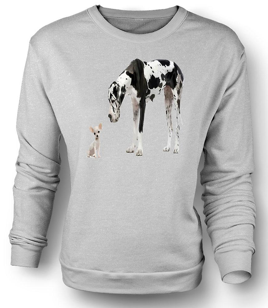 Mens Sweatshirt Great Dane And Chihuahua Cut Pet Dogs