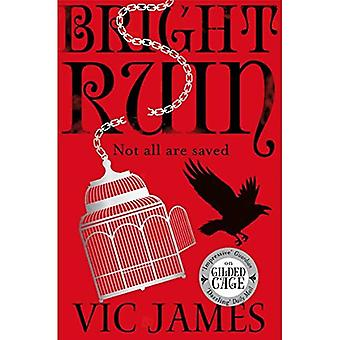 Bright Ruin (The Dark Gifts Trilogy)