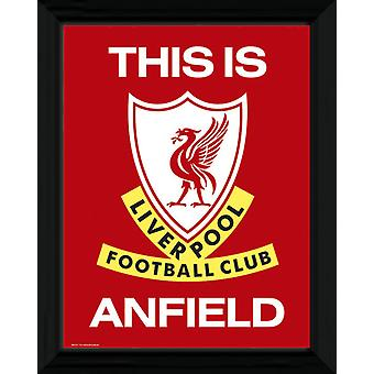 Liverpool This Is Anfield Framed Collector Print 40x30cm