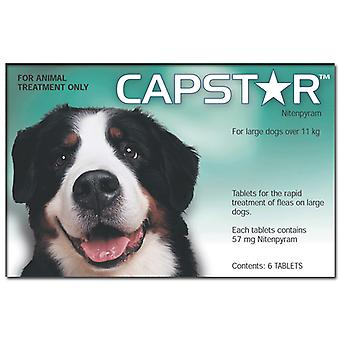 Capstar Tablets for Large Dogs 11.1kg (25lbs)