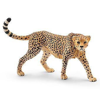 Schleich Cheetah