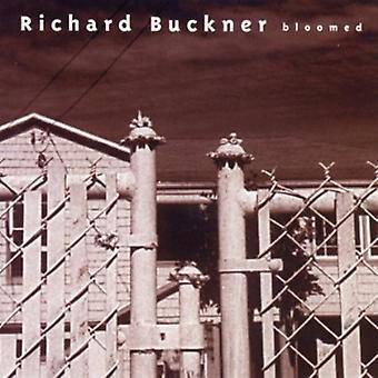 Richard Buckner - Bloomed (Reissue) [Vinyl] USA import