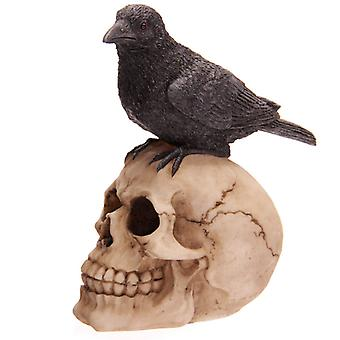 Nemesis Now - SKULL CROW - Gothic Figurine