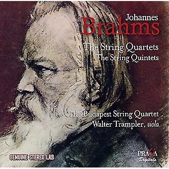 Brahms / Budapest Strygekvartet - strygekvartetter & kvintetter [CD] USA import