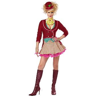 The Mad Hatter Alice In Wonderland Fairy Tale Story Book Week Womens Costume