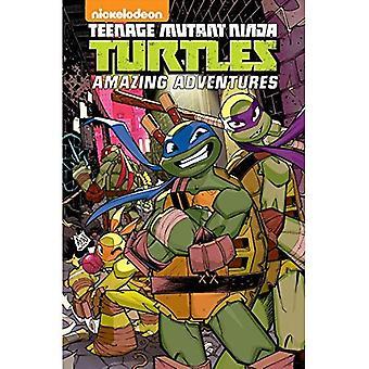 Teenage Mutant Ninja Turtles: Volume 4: Amazing Adventures