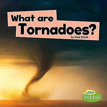 What Are Tornadoes? (Wicked� Weather)
