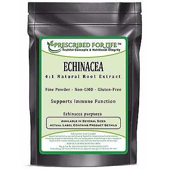 Echinacea - 4:1 Natural Root Extract Powder (Echinacea purpurea)
