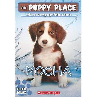 De Puppy plaats #29: mokka
